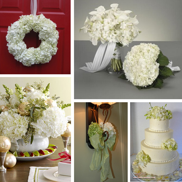 Beautiful Wedding Decoration Pictures