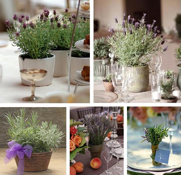 Lavender herb centrepiece ideas - primadonnabride.co.za