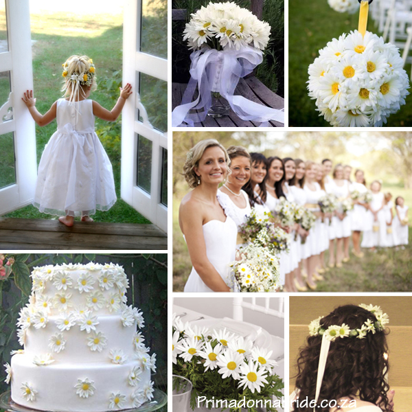 Of Daisy Bride Marriage Agency 113